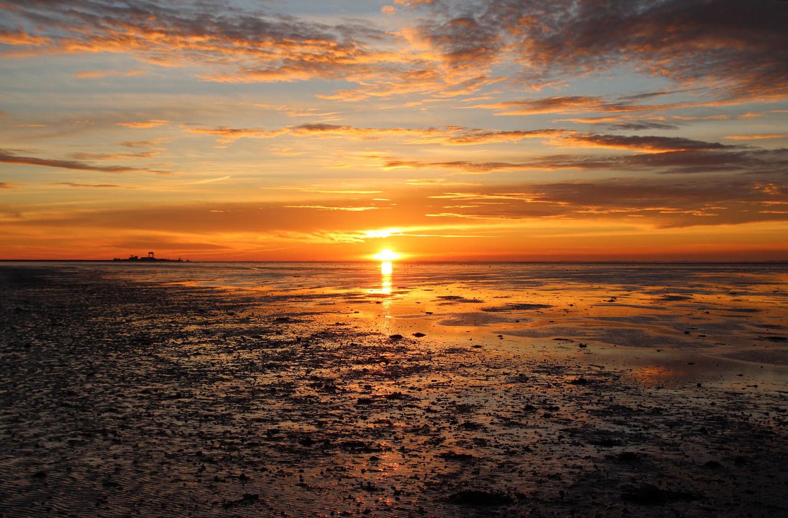 Daily Sunrise Sunset