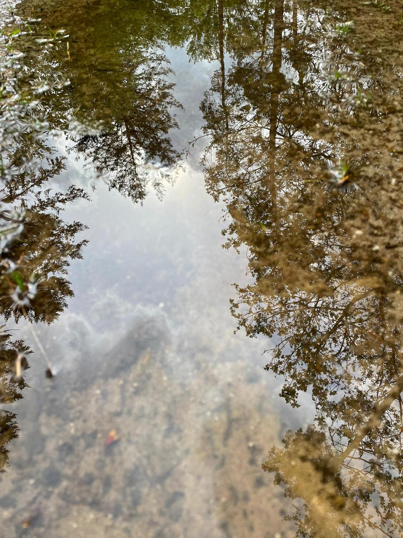 SWeegh puddlemagic SE1