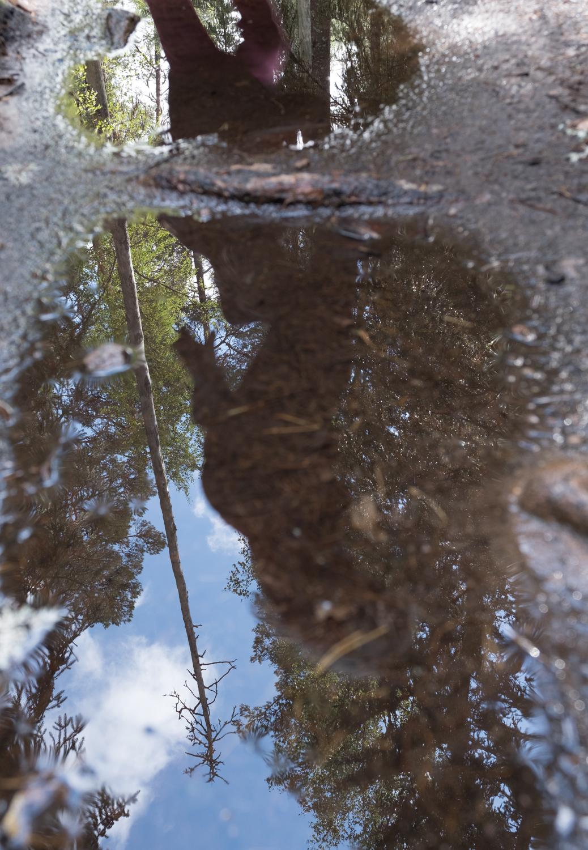 SWeegh puddlemagic SE4