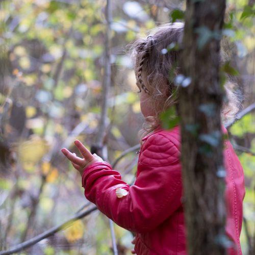 Het ongerepte bos in, Else achterna